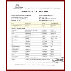 Čaga Sibírska – 100% čistý extrakt Sibírskej chagy