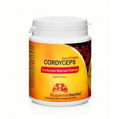 Cordyceps – extrakt s obsahom 40% polysacharidov a 15% manitolu