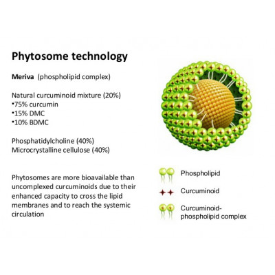 Curcumin Phytosome – kurkumín s vysokou vstrebateľnosťou